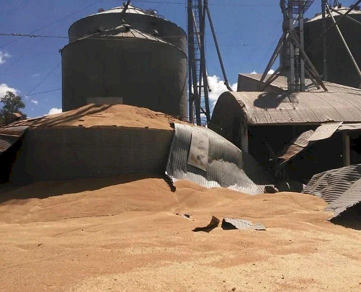 Silo carregado de grãos se rompe