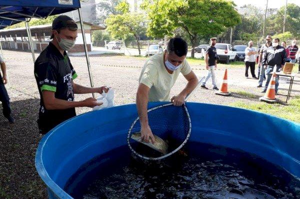 Emater/RS-Ascar divulga expectativa de comercialização de peixes na Semana Santa