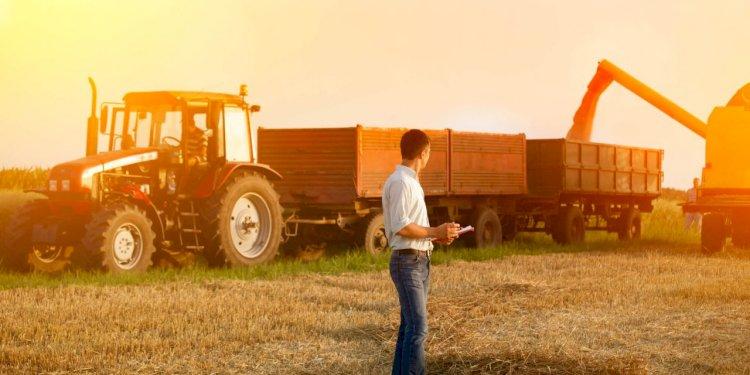 Agricultura alerta sobre nova onda de golpes no RS