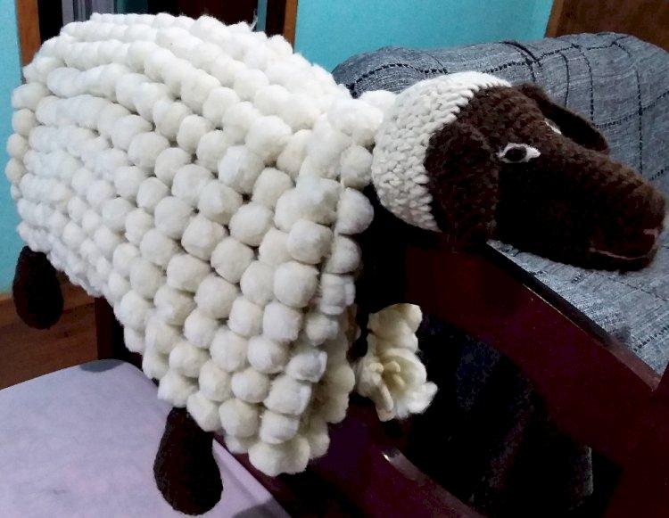 Artesanato em lã ovina da região de Santa Rosa recebe novamente destaque estadual